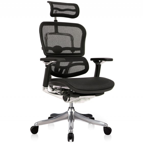 Scaun Ergonomic Ergohuman Plus Luxury - W Black Mesh