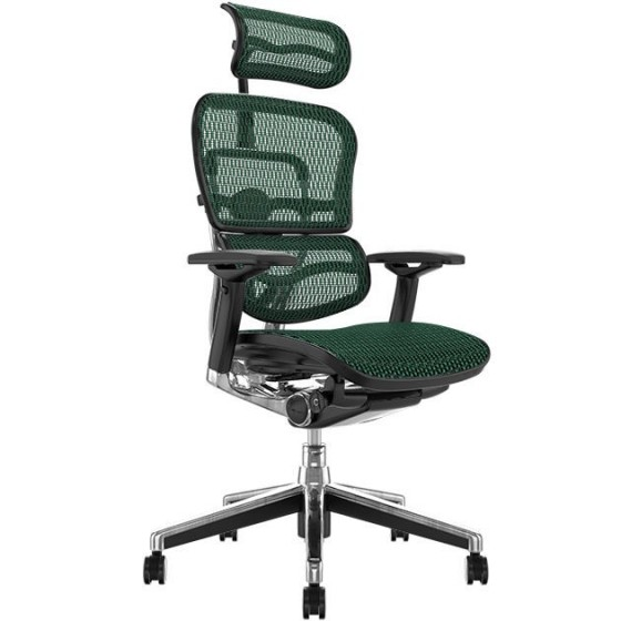 Scaun Ergonomic Ergohuman V2 Elite Plus - Green Mesh