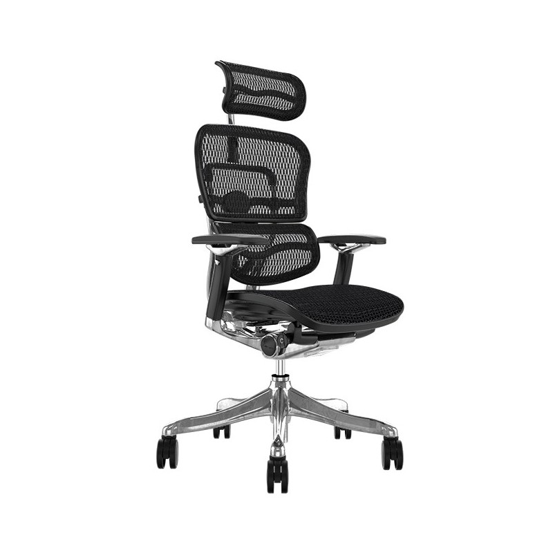 Scaun Ergonomic Ergohuman Plus Luxury - Black Mesh