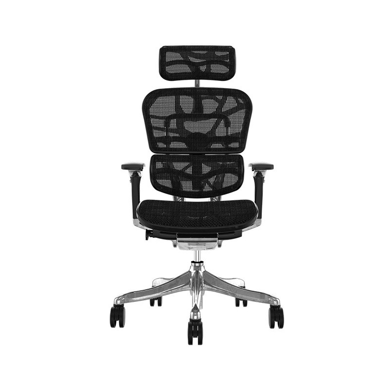 Scaun Ergonomic Ergohuman Plus Luxury - Mesh ZB