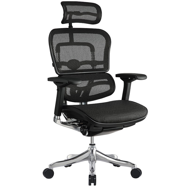 Scaun Ergonomic Ergohuman Elite Plus bază Luxury